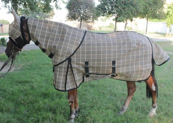 Gng R4510 Pvc Shade Cloth Rug With Hood And Fly Mask